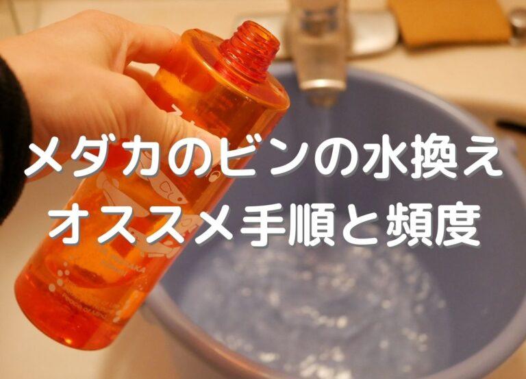 メダカのビンの水換え方法。手順と適切な頻度とは