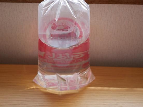 ペットショップで買ってきたメダカと飼育水